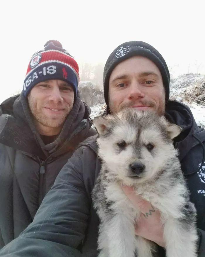 美国滑雪运动员在韩国救了90只狗