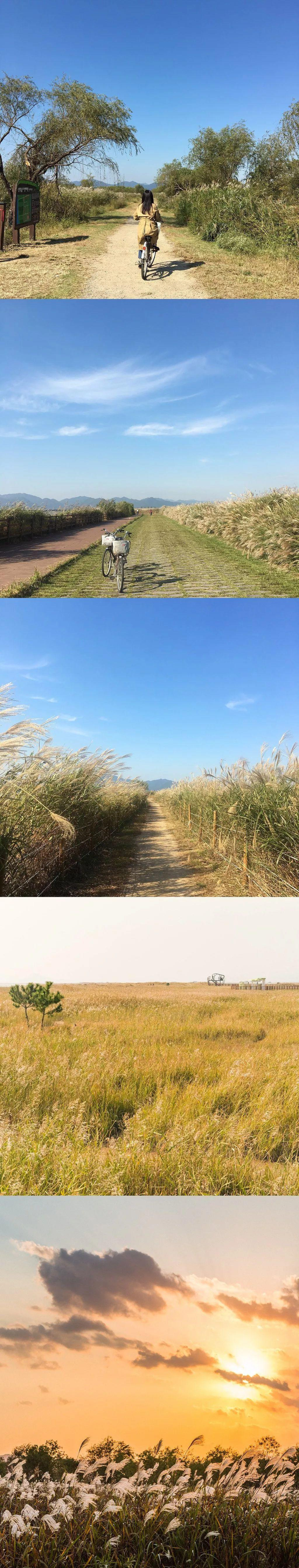 一组图片带你走进美丽釜山