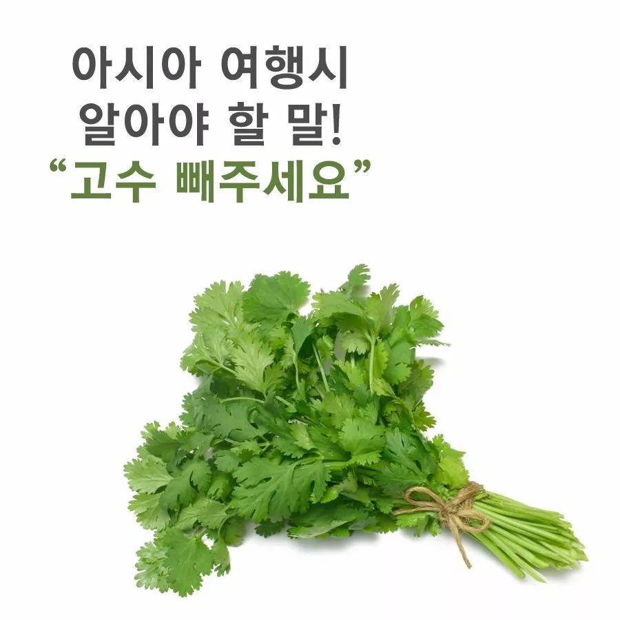 韩国人不爱吃香菜?原来与基因有关
